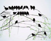 fågelfjäder royaltyfri illustrationer