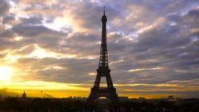 Fågelflyg och Eiffeltorn med solnedgångbakgrund stock video