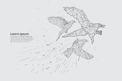 Fågelflyget med rörelse och effekt Arkivfoton