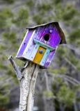 fågelhus Royaltyfria Bilder