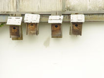 fågelhus Arkivbilder