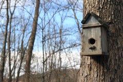 fågelhus fotografering för bildbyråer