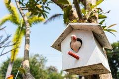 Fågelhus i skogen Fotografering för Bildbyråer