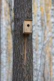 Fågelhus som hänger från trädet med ingångshålet i formen av en cirkel i höstskog fotografering för bildbyråer