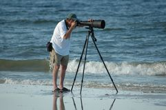 fågeliakttagare Royaltyfri Fotografi