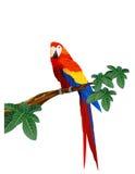 fågelmacaw Arkivfoto