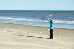 fågelmatning Royaltyfri Foto
