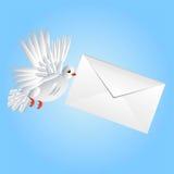 Fågeln en vit duva bär ett vitt kuvert i en näbb stock illustrationer