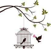 Fågeln kommer med förälskelse till fågeln i buren Arkivfoton