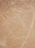 fågeln lines nazca Royaltyfri Fotografi