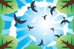 fågeloklarheter ser ner den soliga skyen stock illustrationer