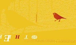 fågelorange Fotografering för Bildbyråer
