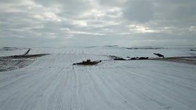 Fågelperspektiv av snö-täckte fält för ligganderussia för 33c januari ural vinter temperatur lager videofilmer