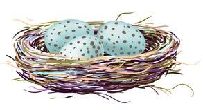 Fågelrede med rödhakeägg vektor illustrationer