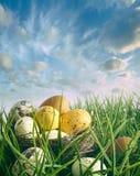 Fågelrede med spräckliga ägg i gräset arkivfoto