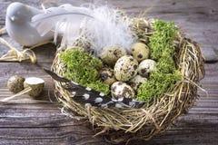 Fågelrede på en tabell med ägg och fjädern arkivbild