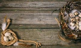 Fågelredet med vaktelägg och fjädern i ett sida och rep rullar ihop med ägget i annat på lantlig wood bakgrund arkivfoton