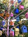 Fågelsötsakhem Arkivbild