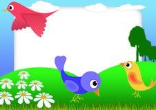 fågelscrapbook Arkivfoto