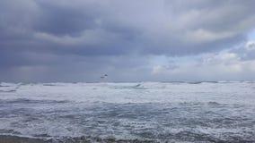 Fågelseagulls ovanför det stormiga havet Arkivbild