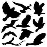 fågelset stock illustrationer