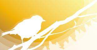 fågelsilhouette Fotografering för Bildbyråer