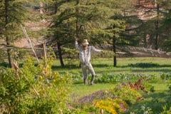 Fågelskrämma i en fruktträdgård i Madrid royaltyfria foton