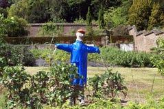 Fågelskrämma i en grönsakträdgård Royaltyfri Foto
