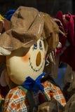 Fågelskrämma i solen Royaltyfri Bild