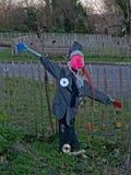 Fågelskrämma i stads- grönsakträdgård royaltyfri foto
