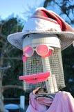 Fågelskrämma med personlighet royaltyfria bilder