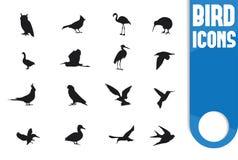 Fågelsymbolskontur på vit bakgrund Royaltyfri Foto