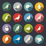 Fågelsymbolsuppsättning royaltyfri illustrationer
