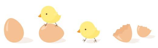 Fågelungeägg stock illustrationer