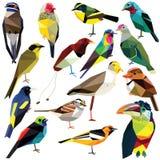 Fågeluppsättning royaltyfri illustrationer