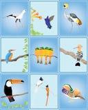 fågelvärld stock illustrationer