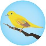 fågelyellow royaltyfri illustrationer
