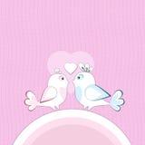 fåglar älskar två Arkivfoton