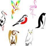 fåglar 1 Vektor Illustrationer