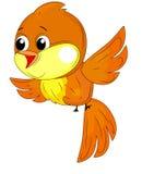 fåglar Royaltyfri Fotografi