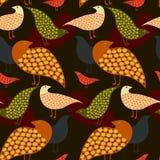 3 fåglar Royaltyfri Fotografi