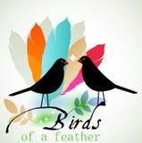 Fåglar av en fjäder Royaltyfri Fotografi