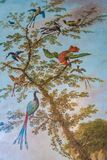 Fåglar av paradiset på en trädmålning royaltyfri illustrationer