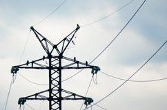 Fåglar av svarta drakar för rovet som sitter på rostade metallstrålar av en kraftledning, står högt mot den molniga himlen Royaltyfri Foto