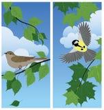 Fåglar bland filialerna stock illustrationer