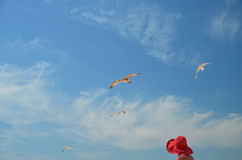 Fåglar i Ð för Ð-¾ för ¾ Ð ³ Д буР¼ himlen Arkivbilder