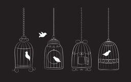 Fåglar i burar royaltyfri illustrationer