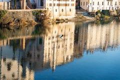 Fåglar i den Brenta floden arkivfoto