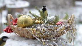 Fåglar i en korg med frö för jul