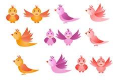 fåglar little Arkivbilder